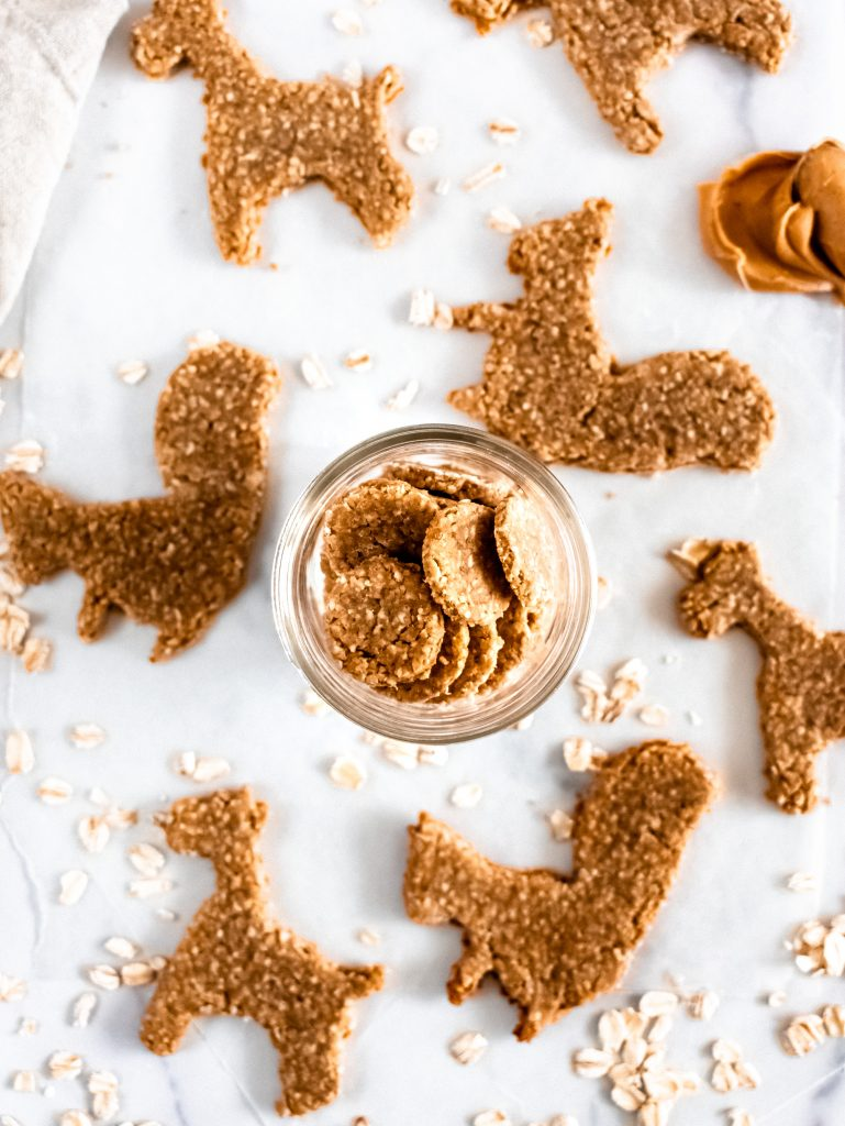 close up of homemade dog biscuits in a jar
